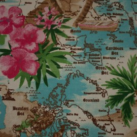 Tecido Algodão Mapas